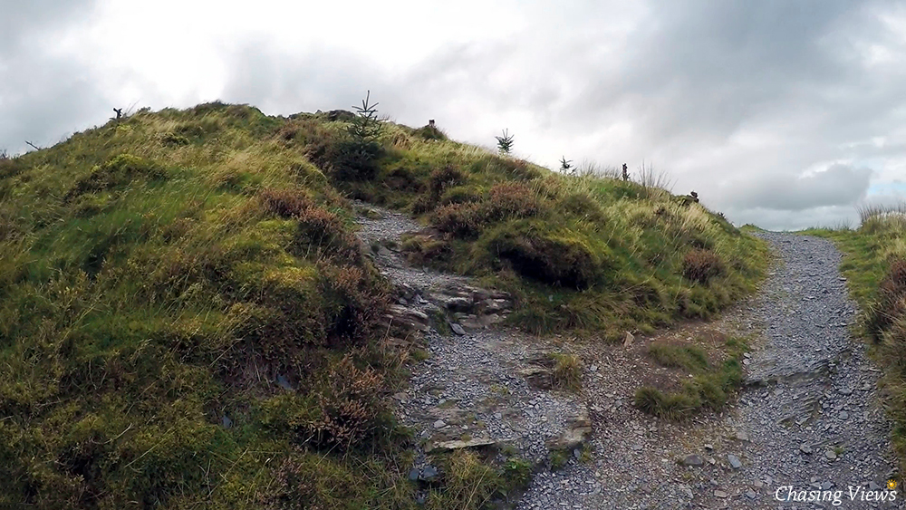 Path leading up to Dodd Fell summit